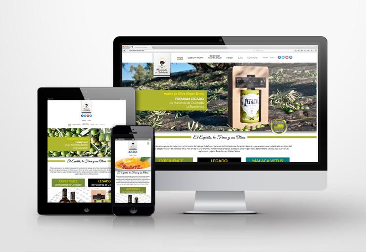 web-corporativa-responsive