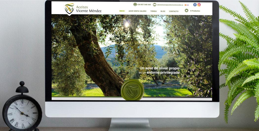 Web de Vicente Méndez